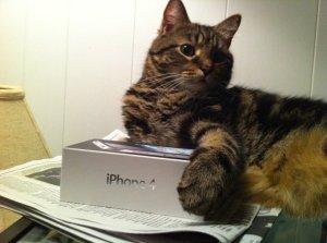 No, my iPhone